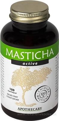MASTICHA ACTIVE - Apothecary cps 1x100 ks