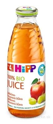 HiPP BIO Jablkovo - hroznová šťava (od ukonč. 4. mesiaca) 1x500 ml
