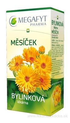 MEGAFYT Bylinková lekáreň NECHTÍK bylinný čaj 20x1,5 g (30 g)