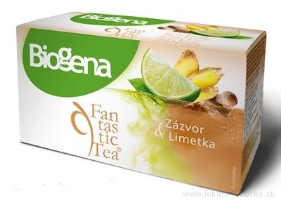 Biogena Fantastic Tea Zázvor & Limetka ovocný čaj 20x2 g (40 g)