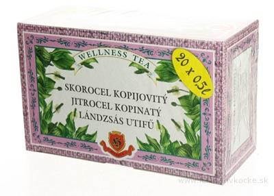 HERBEX SKOROCEL KOPIJOVITÝ bylinný čaj 20x3 g (60 g)