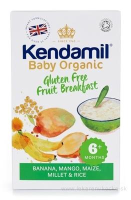 KENDAMIL Organic, BIO Bezglut. kaša ovocné raňajky (banán, mango) obilná (od ukonč. 6. mesiaca) 1x150 g