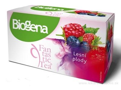 Biogena Fantastic Tea Lesné plody ovocný čaj 20x2,2 g (44 g)